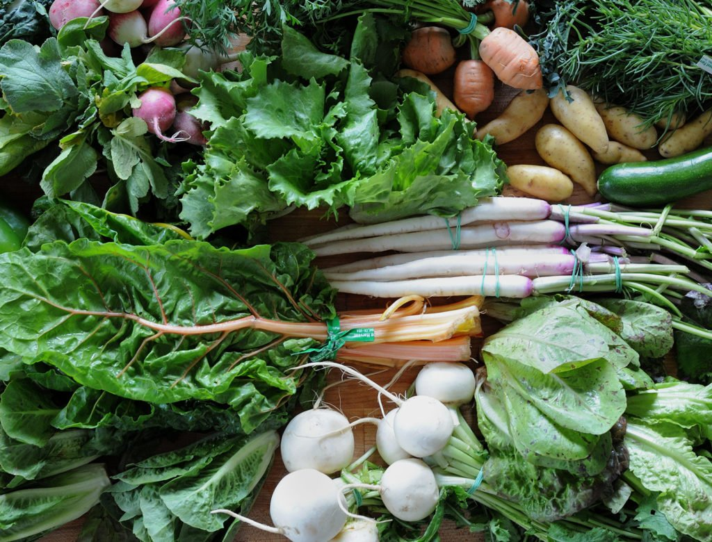 Recipes and Strategies to Make the Most of a CSA Box or Any Vegetable Haul