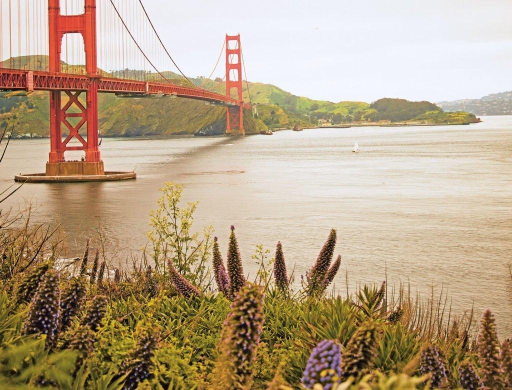4 Recipes Celebrating California Cuisine