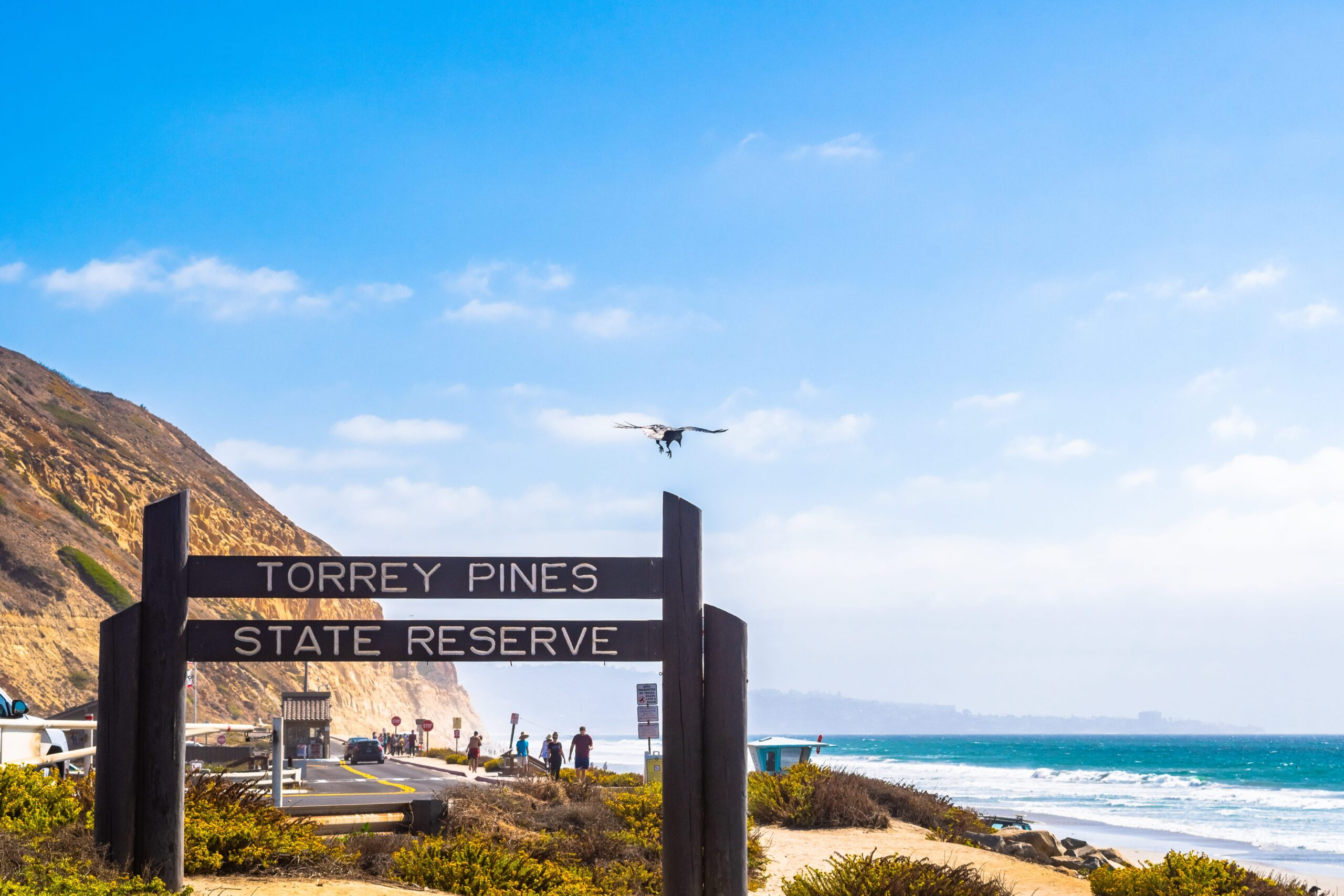 """Wooden sign saying """"Torrey Pines State Reserve"""" in La Jolla"""
